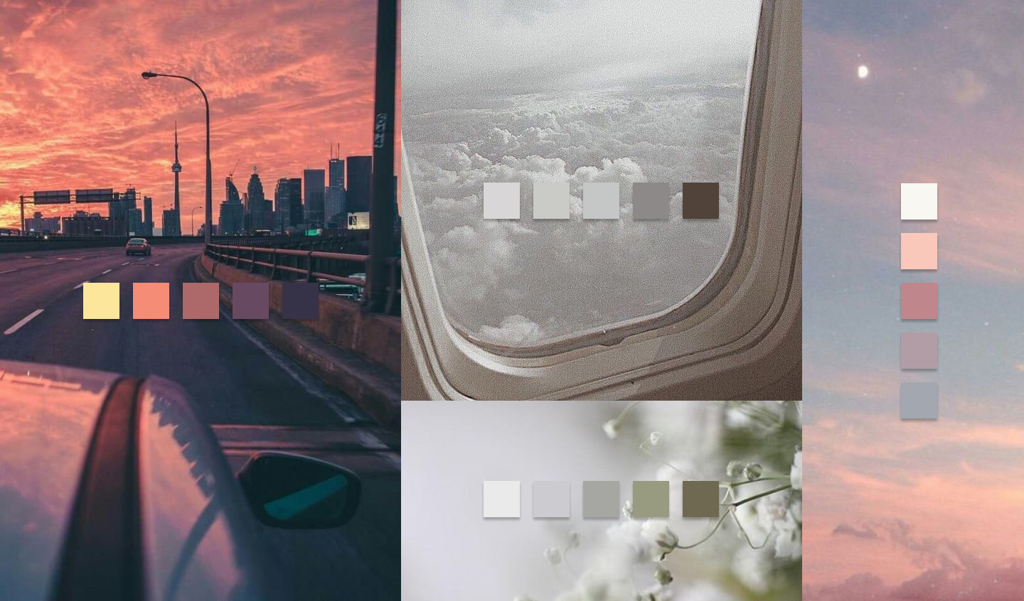 images of a sunset, clouds outside a plane window, dandelions and a pastel cloudy sky