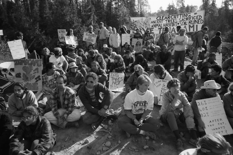 Temagami Blockade - 1987