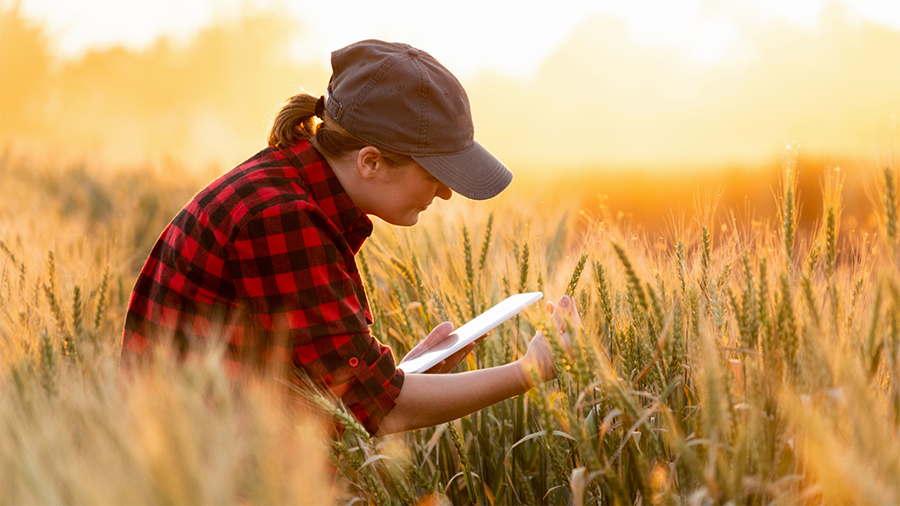 Agrivi raises €4 million for its mission of digitization global agriculture
