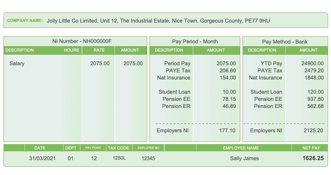 Replacement Payslip Showing Standard Options