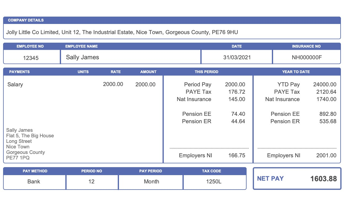 New Compact Payslip Style in Blue