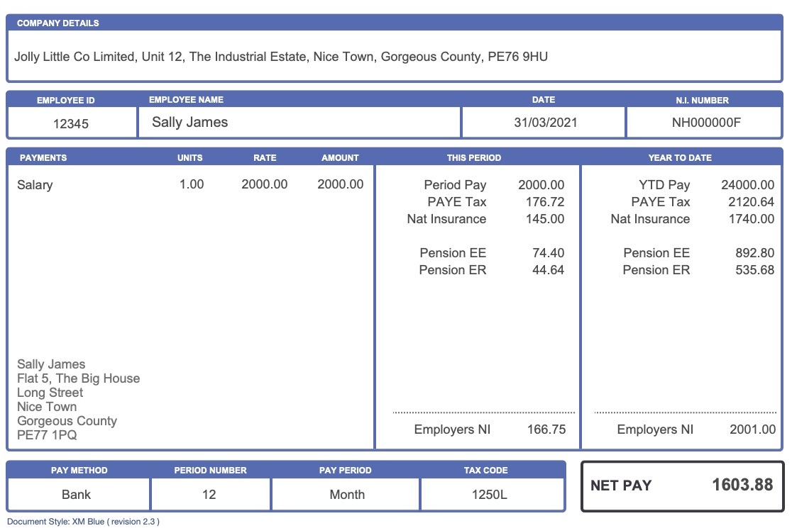 Replacement Payslip XM Blue