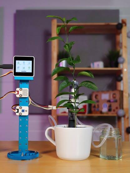 Automated Indoor Garden Setup