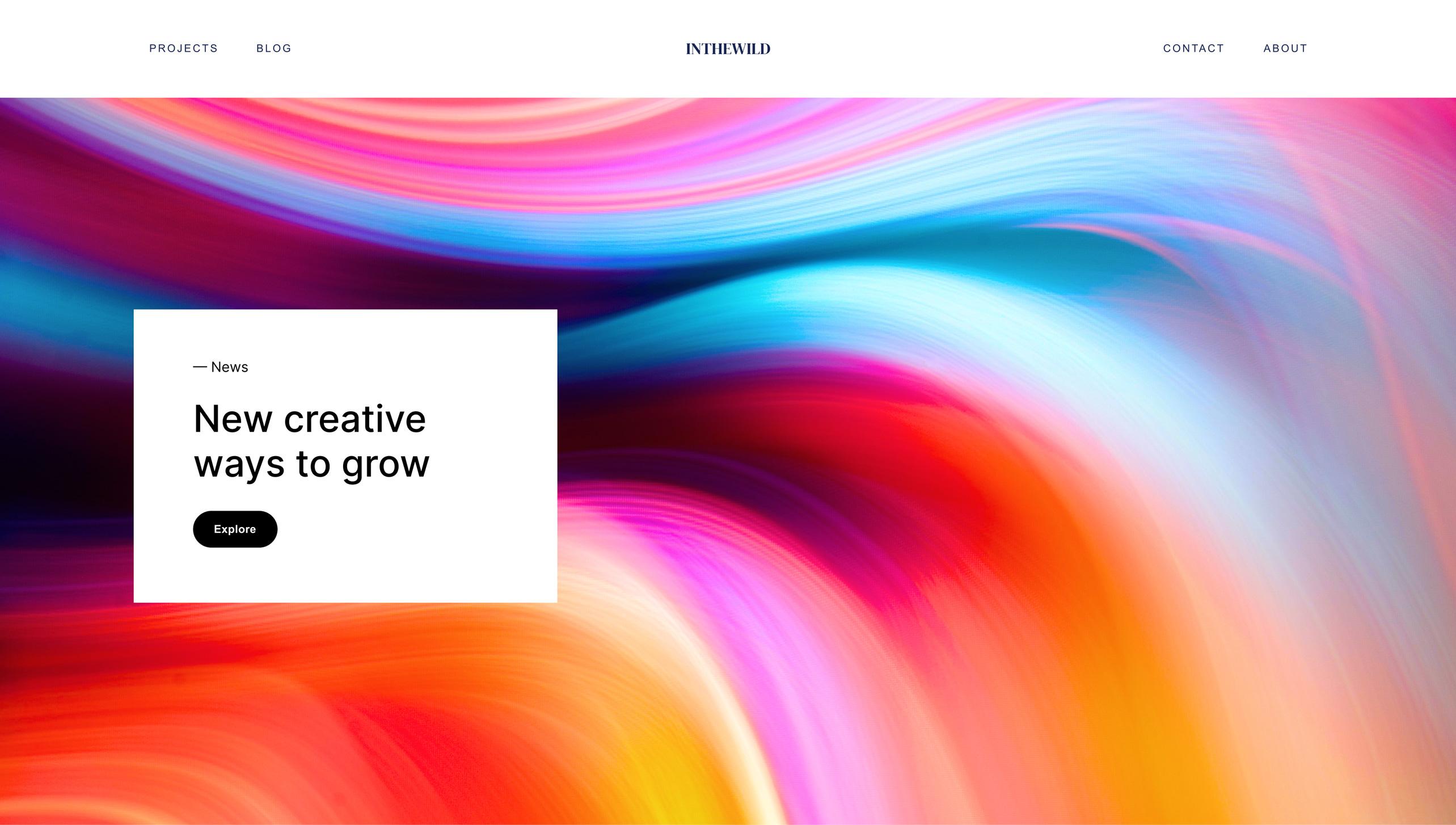 Website project screenshot