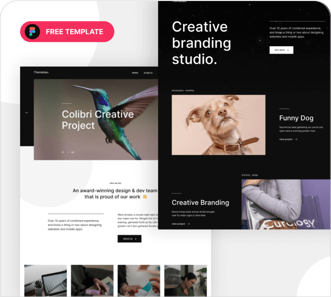 Themebau Portfolio Website Template