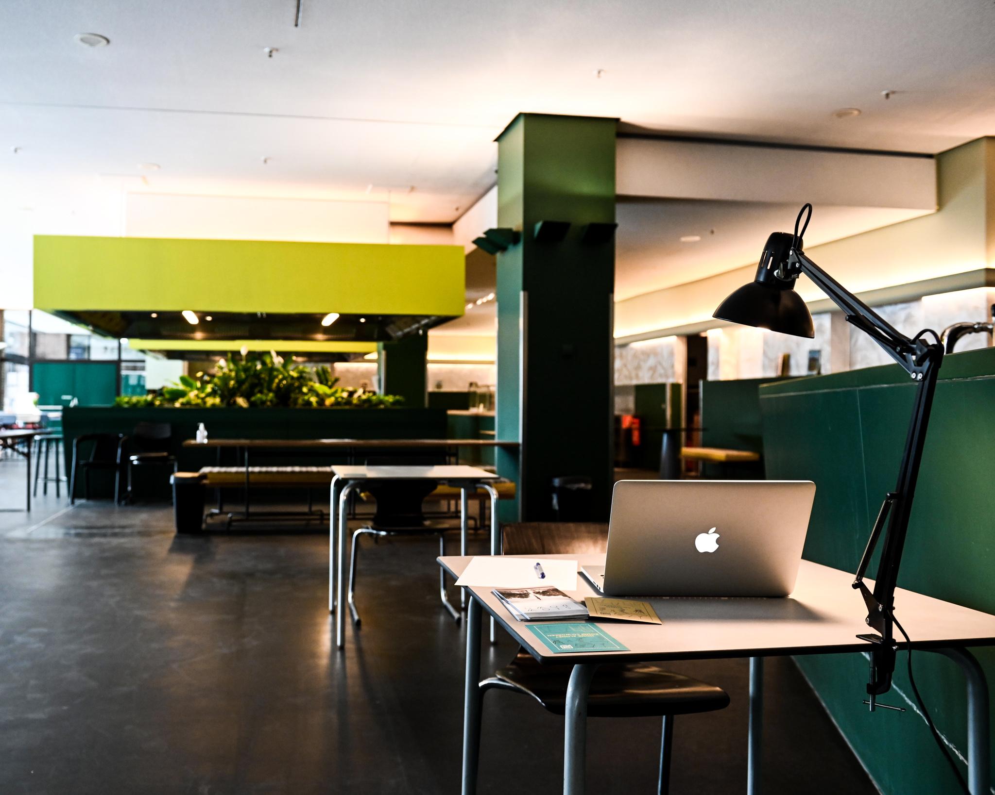 Optimistic Elephant - ein MUCBOOK Clubhaus