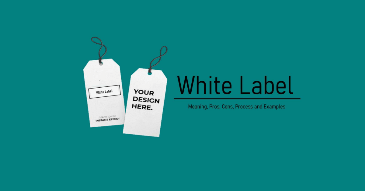 White Label Website: Get to Know the Rules & Solve All Your Problems!