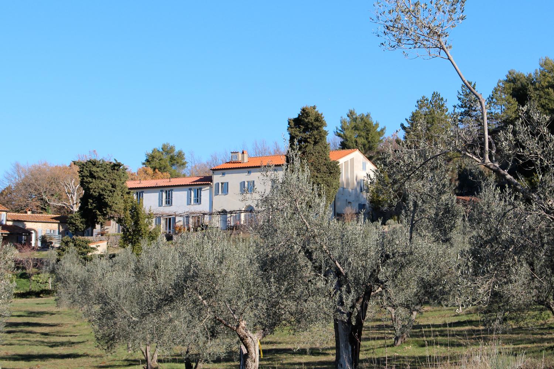 Podere Riparbella zwischen ihren Olivenbäumen