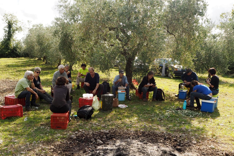 Pause während der Olivenernte auf Podere Riparbella