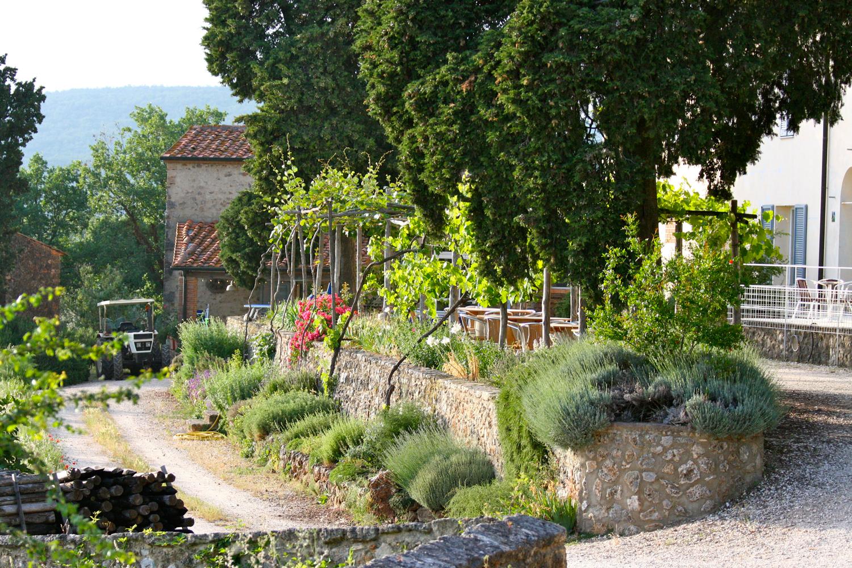 Die Terrasse und Blumen von Podere Riparbella