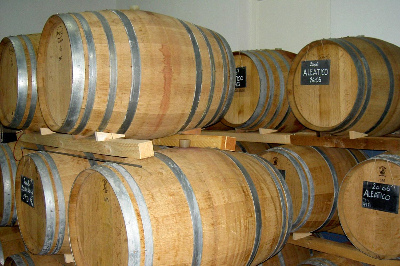 Weinfässer von Podere Riparbella