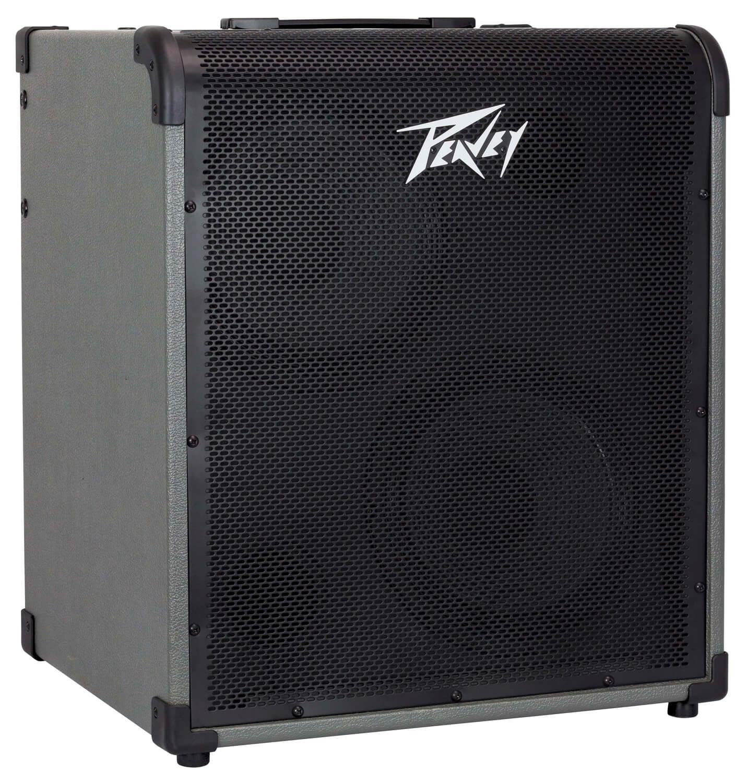 Peavey MAX300 Bass Combo