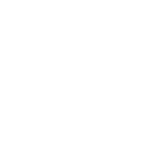 branched roots boise agency