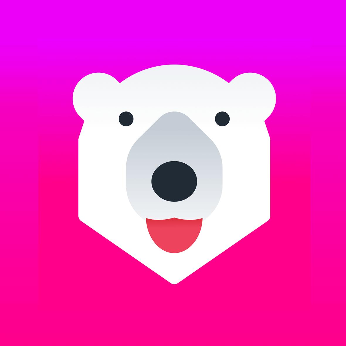 Conversion Bear