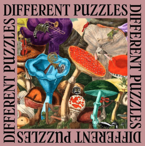 Different Puzzles