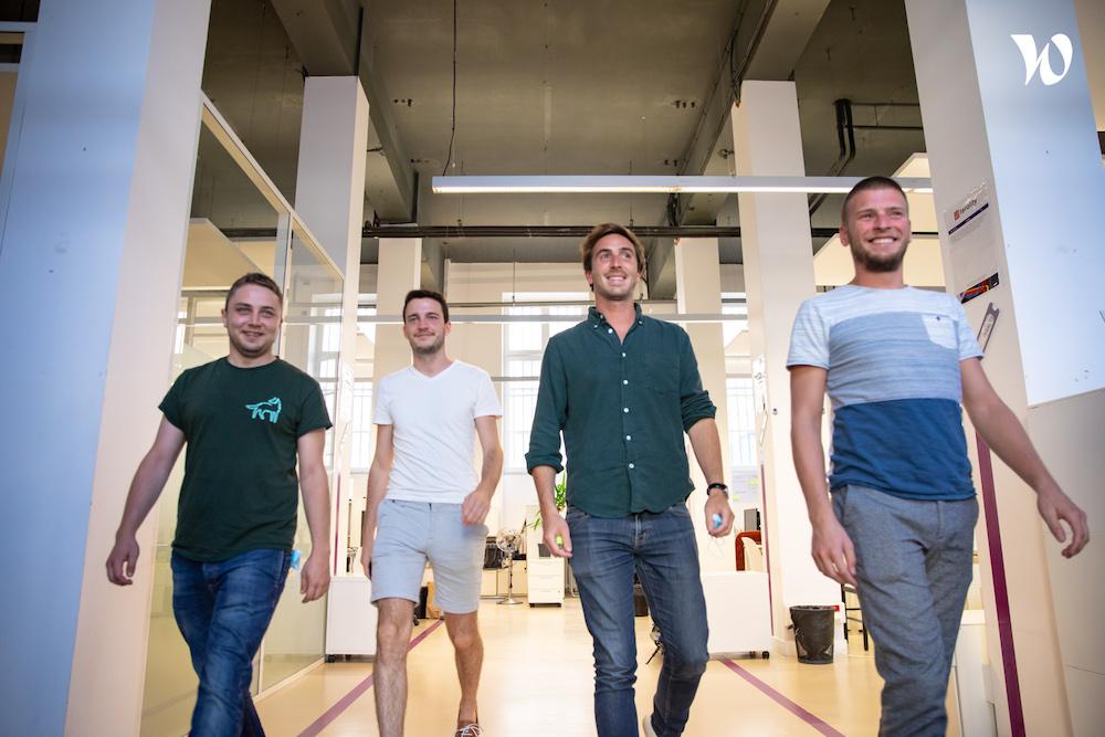 team modjo walking