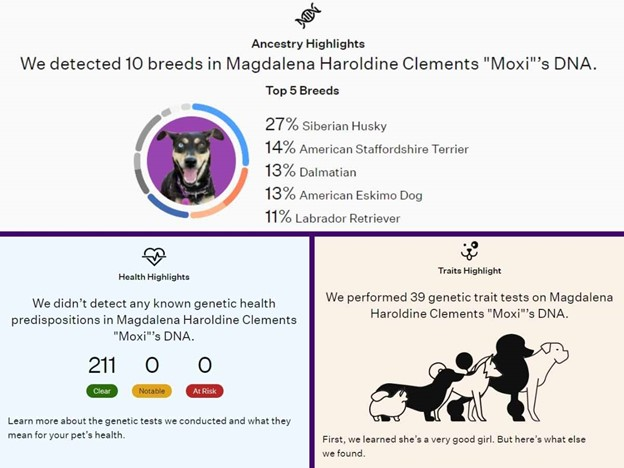 Moxie's DNA results