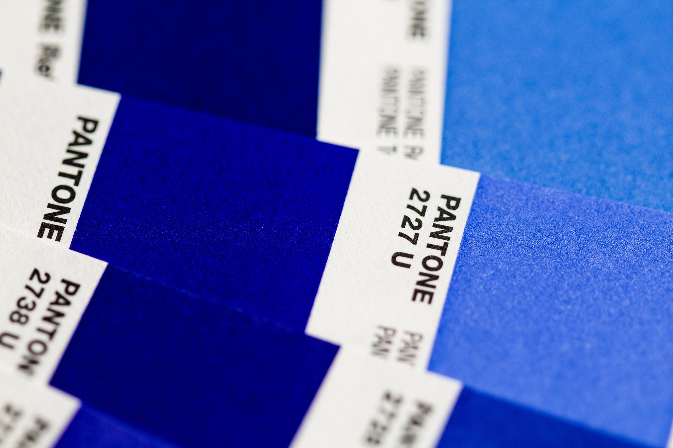 El Libro Amarillo Tendencias de Color Primavera 2021 Azul Cobalto Giff Animado pantones azules