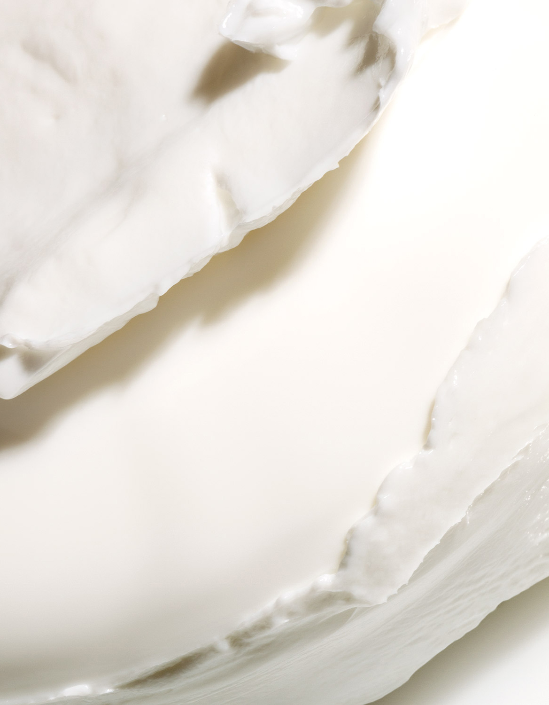 El Libro Amarillo - Stem Cellular (Anti-Wrinkle Overnight Cream) Juice Beauty