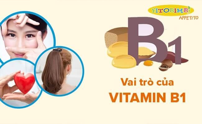 Vai trò của vitamin B1 rất quan trọng