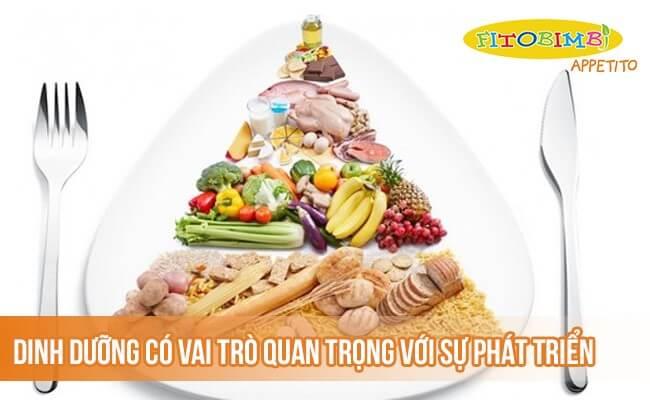 Dinh dưỡng có vai trò quan trọng với sự phát triển của trẻ