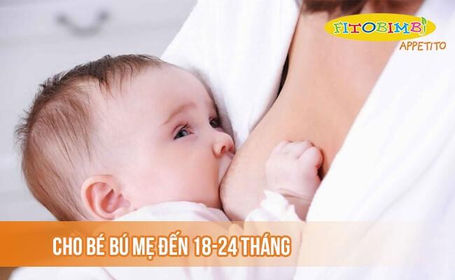 Trẻ đang bú mẹ tiếp tục cho bú đến 24 tháng