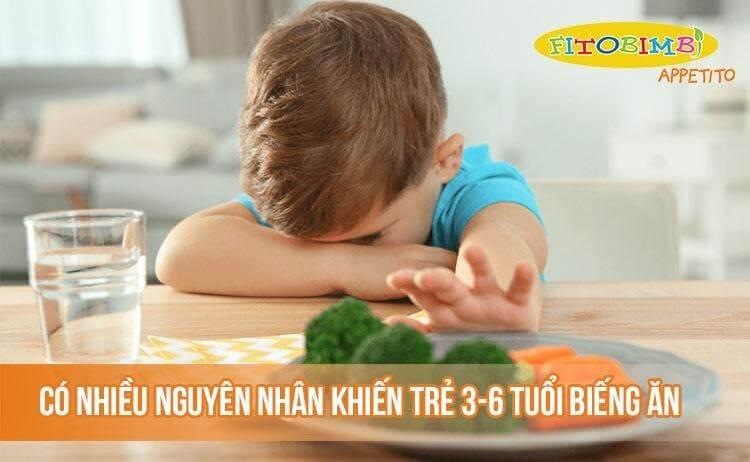 Vì sao trẻ 3-6 tuổi biếng ăn?