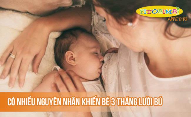 Có nhiều nguyên nhân khiến bé 3 tháng lười bú