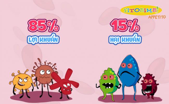 Tỷ lệ vi sinh vật hoàn hảo trong đường ruột của bé