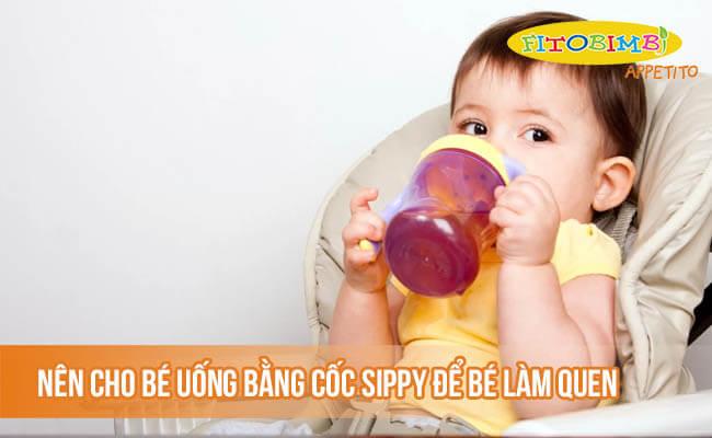 Nên tập cho bé uống nước bằng cốc sippy để bé làm quen với việc uống nước bằng cốc
