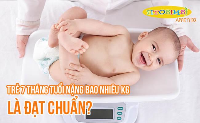 Trẻ 7 Tháng Tuổi Nặng Bao Nhiêu Kg Là Đạt Chuẩn?