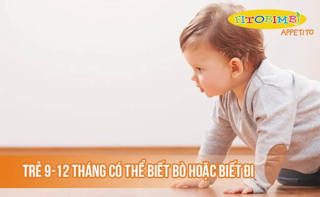 Trẻ 9-12 tháng có thể biết bò hoặc biết đi
