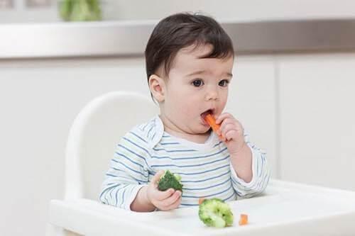 Tập cho trẻ ăn rau xanh và hoa quả ngay từ lúc 12 – 16 tháng
