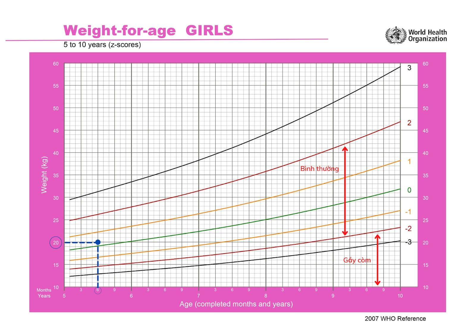 Biểu đồ tham chiếu cân nặng ở trẻ gái 5 – 10 tuổi