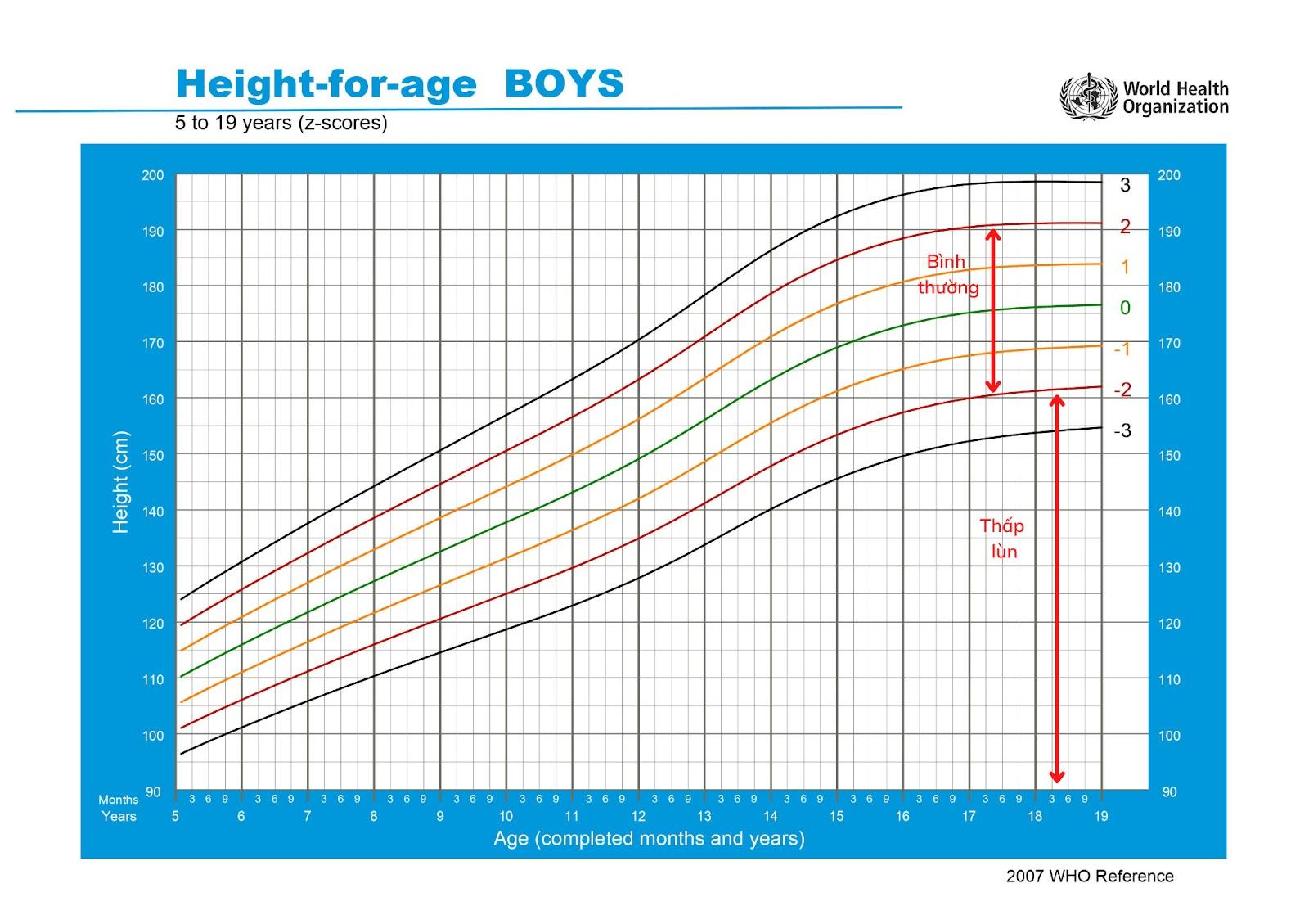 Biểu đồ tham chiếu chiều cao ở trẻ trai 5 – 19 tuổi
