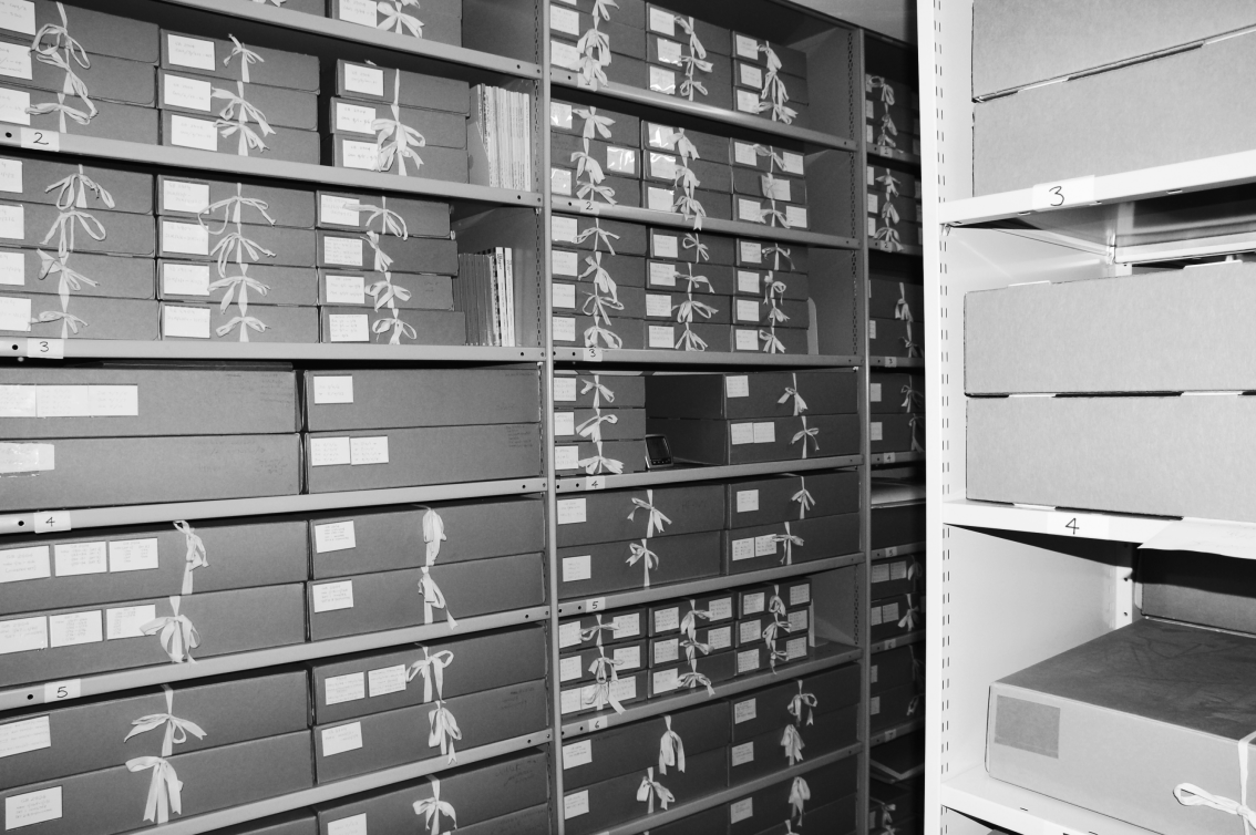 An image of the George Padmore Institute's archive