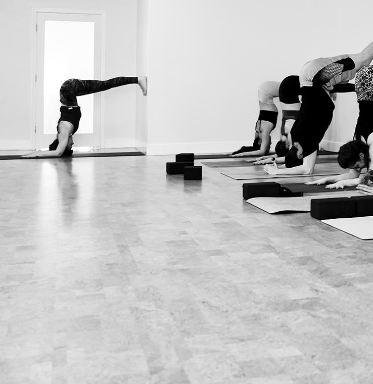 Yoga inversion forearm balance