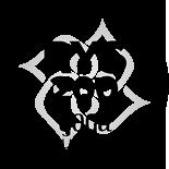 Yoga Alliance Certified