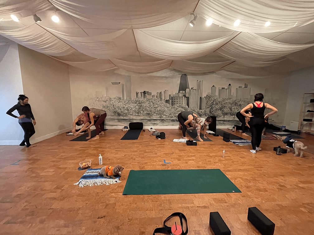 Teaching adjustments for yoga students