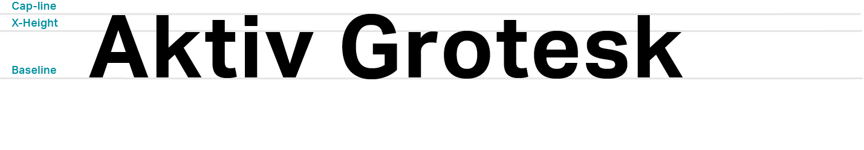 Styleguide Typeface