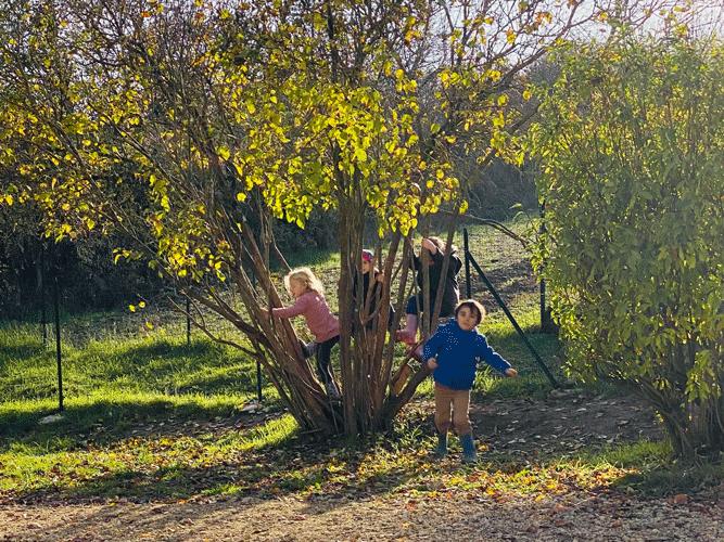 Enfants et Nature à l'école Elise