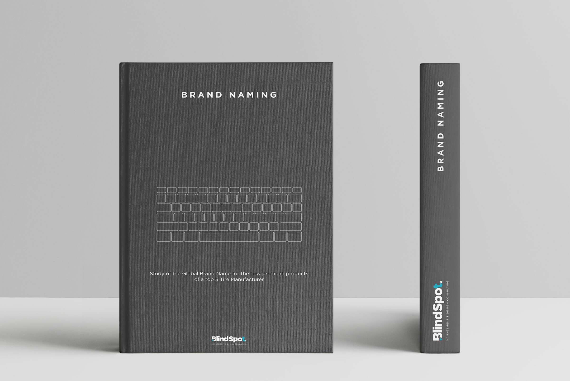 BlindSpot Brand Value Gray Book