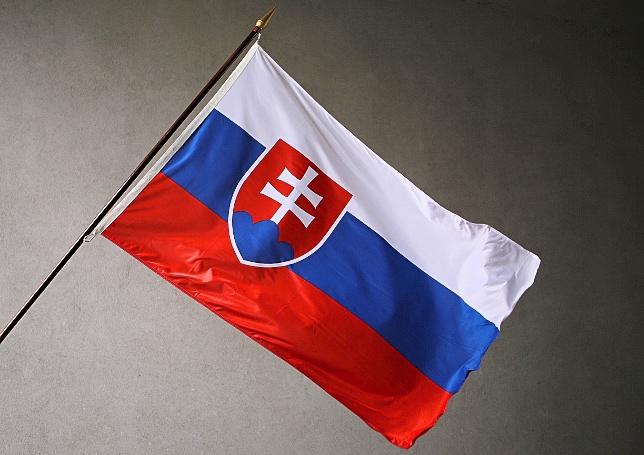 Úspěchy a úskalí transformace systému péče o ohrožené děti na Slovensku