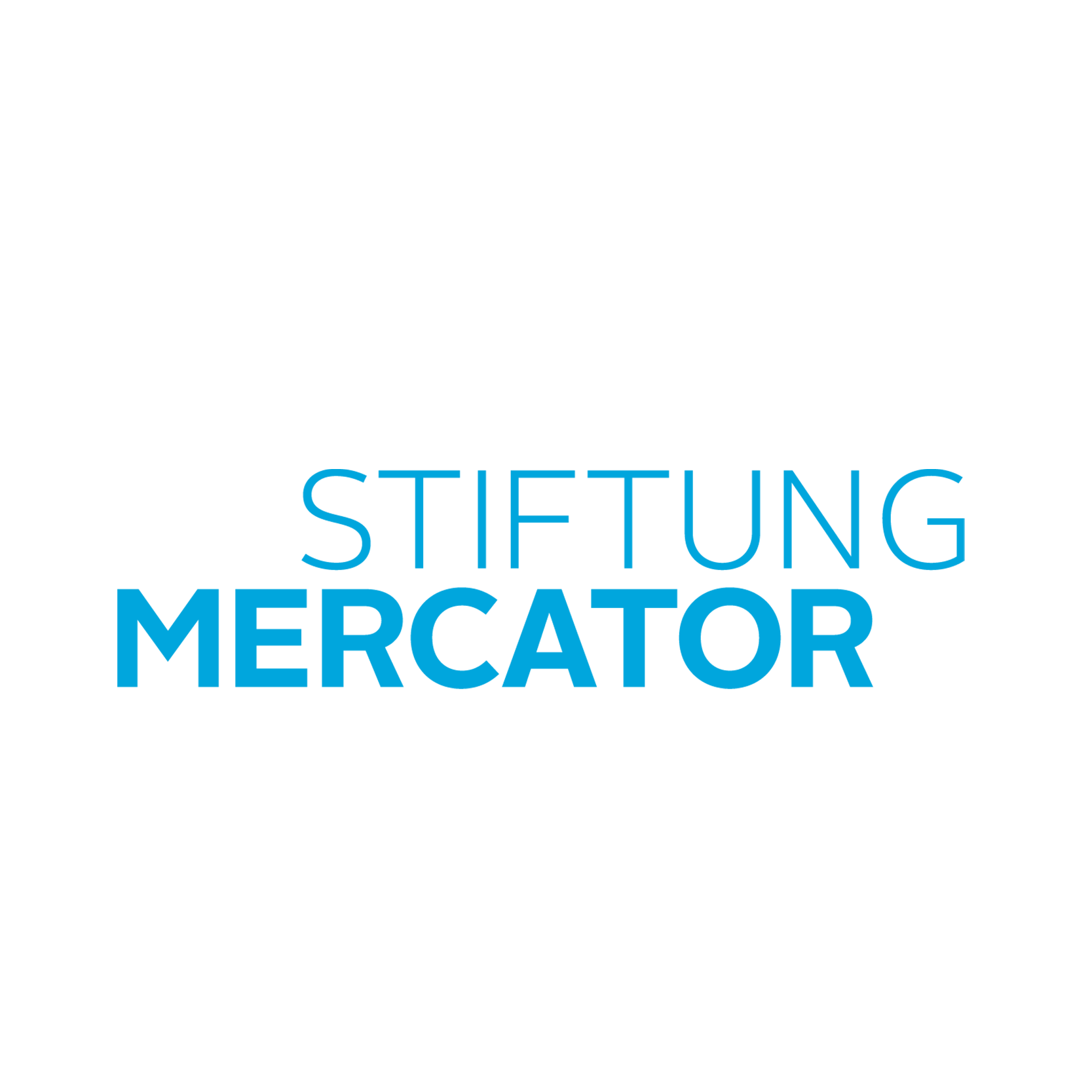 Stiftung Mercator Logo Agentur