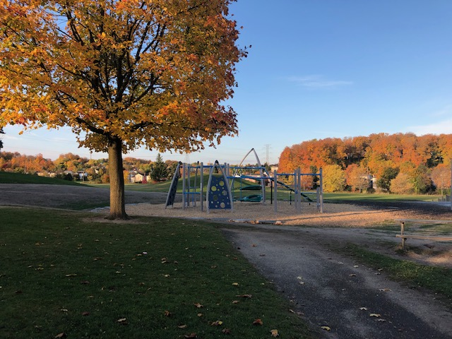 Meadowlane Public School Playground (Kitchener, ON)