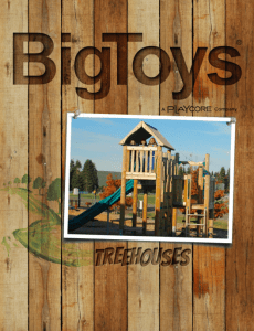 Park-N-Play-Design-Supplier-Catalogs-Cover-Big-Toys-Treehouses-230x300