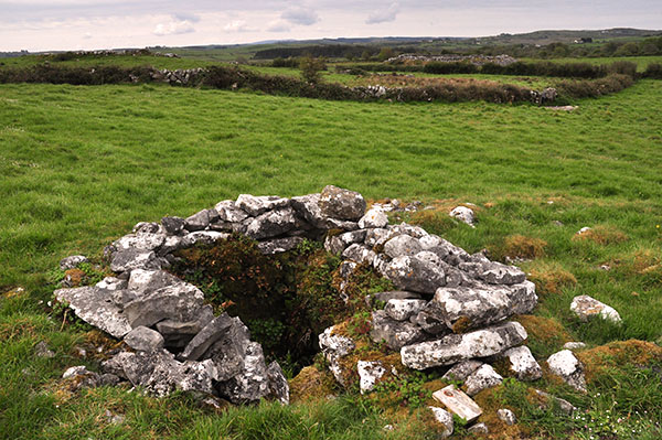 St. Fachtnan's Holy Well, Kilfenora
