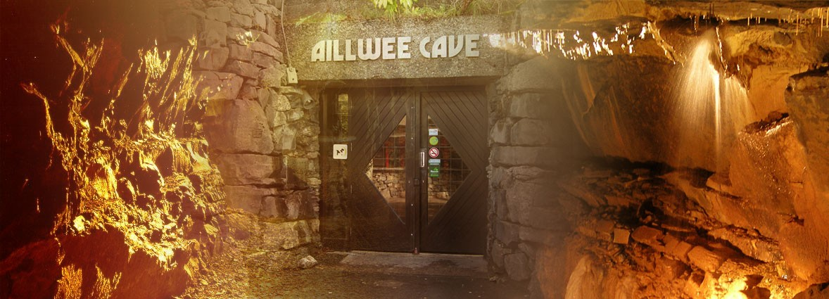 Aillwee Cave and The Birds of Prey