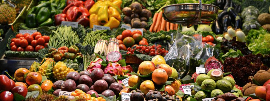 Création marketplace B2B dans l'agro-alimentaire