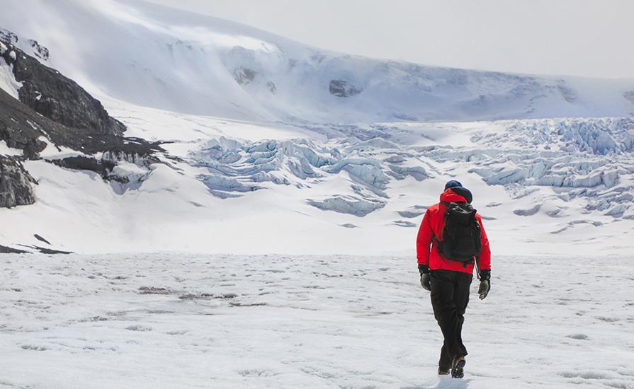 IceWalk Guides Glacier Hike